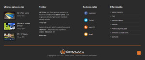 Footer o pie Demo-Sports
